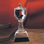 Trophy Cup Crystal Awards